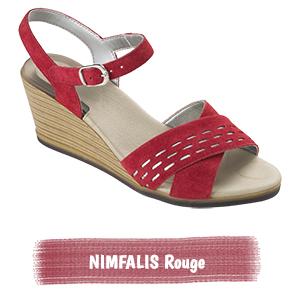 nimfalis