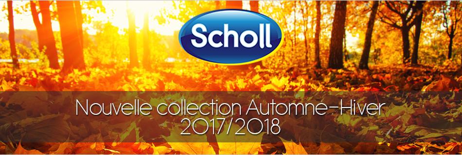 scholl_AH17_18