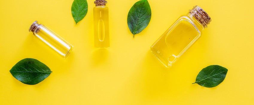 Tea tree essential oil near tea tree leaves on yellow background top view.